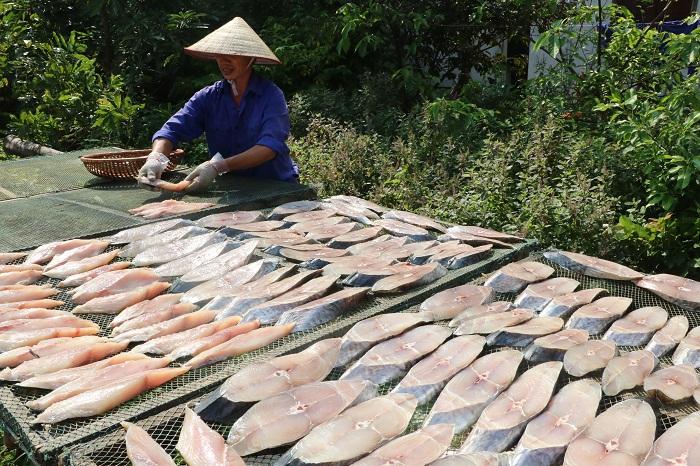 Xếp cá lên các phên tre nứa thành một lớp phơi dưới ánh nắng mặt trời